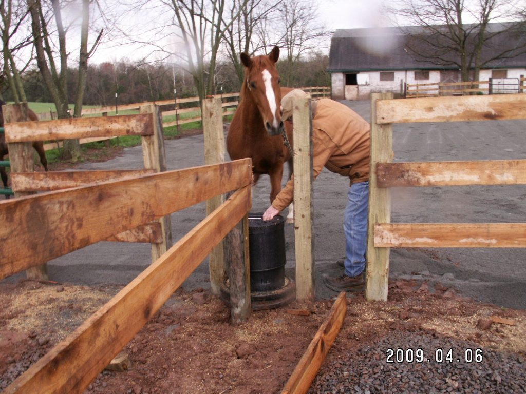 Bar Bar A Automatic Horse Waterer Installed Between Stalls in Plain City, Utah